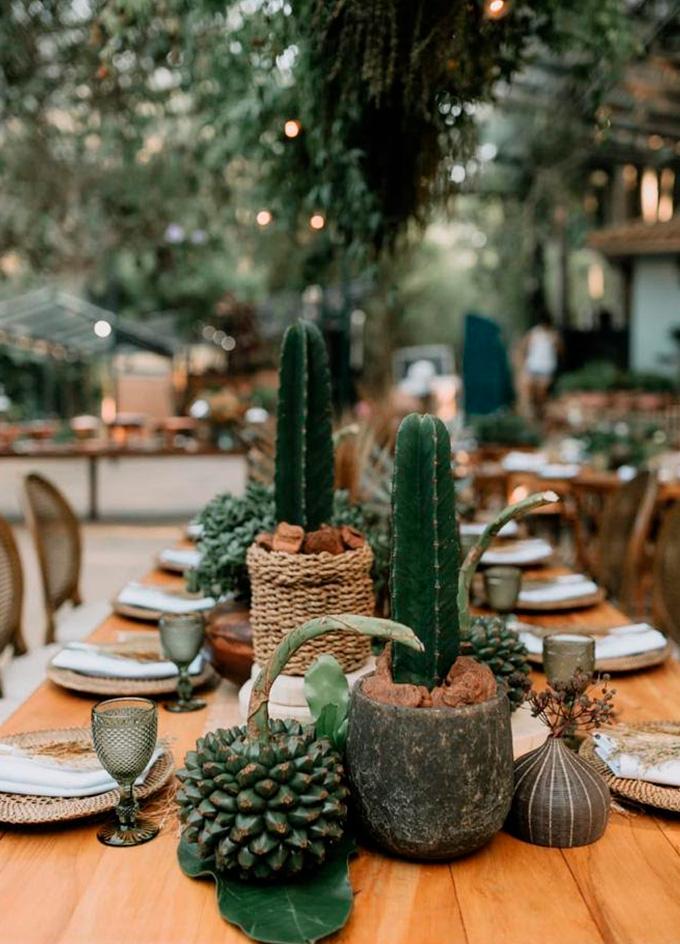 Decoração de casamento com cactos mesa dos convidados - Cheers
